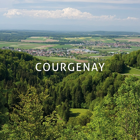 Courgenay